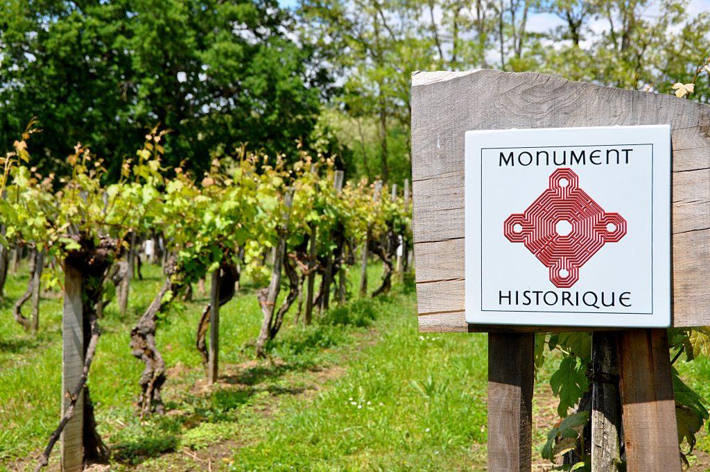 Sarragachies vineyard