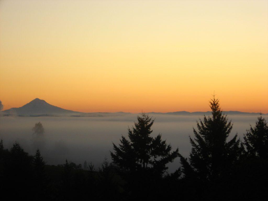 another sunrise, Maresh Vineyard