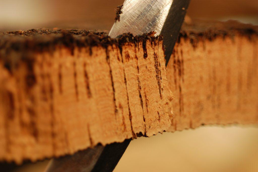 Raw cork selection - closup 100